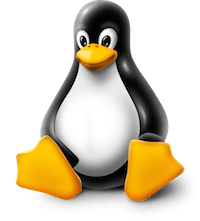Comment installer VirtualBox sous Linux ?