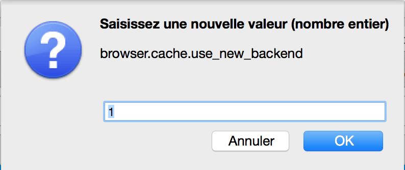 activer-cache-ff-4