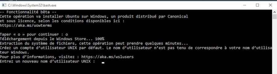 w10-install-bash-ubuntu-10