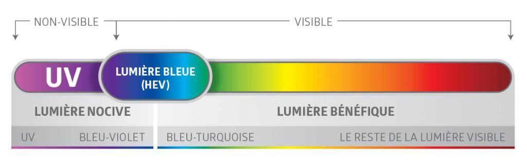 Spectre-lumière-bleue-Descary-Descary-optométristes-opticiens-Montréal-Plateau-Mont-Royal-rue-St-Denis-